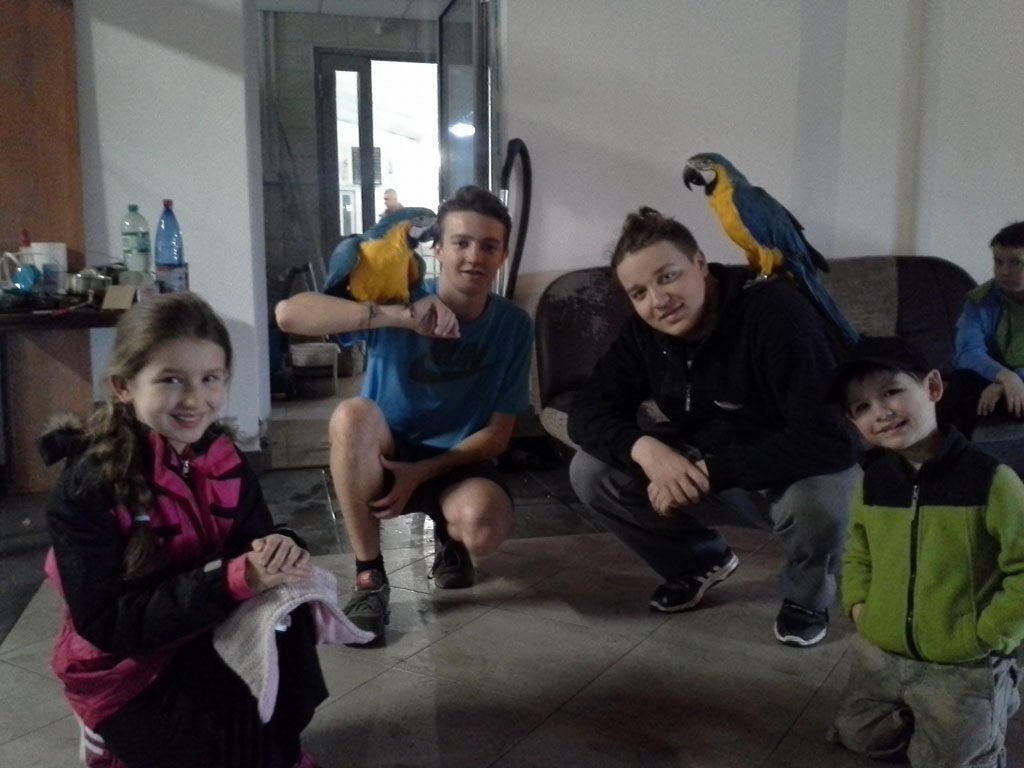 Lehman children meeting two parrots with Bartek and Nikodem